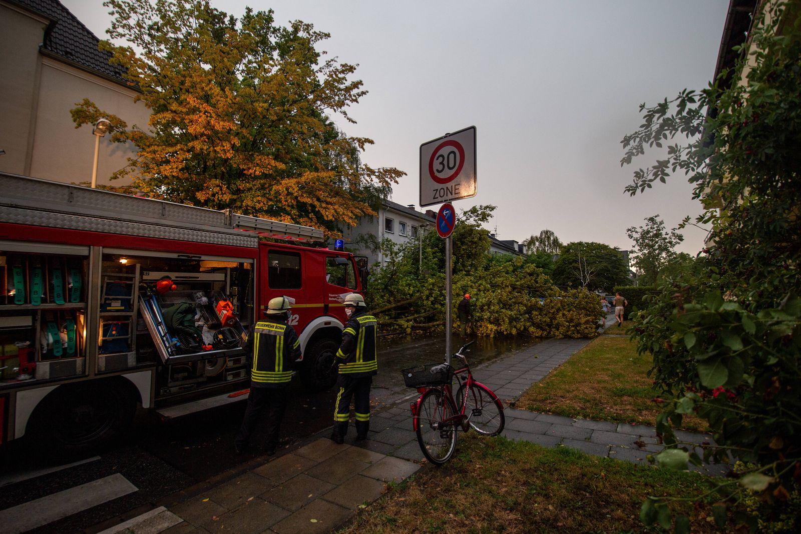 12.08.2020 Schweres Unwetter in Bonn In Bonn gab es am 12.08.2020 teils große Unwetter-schäden, viele Bäume umgestürzt