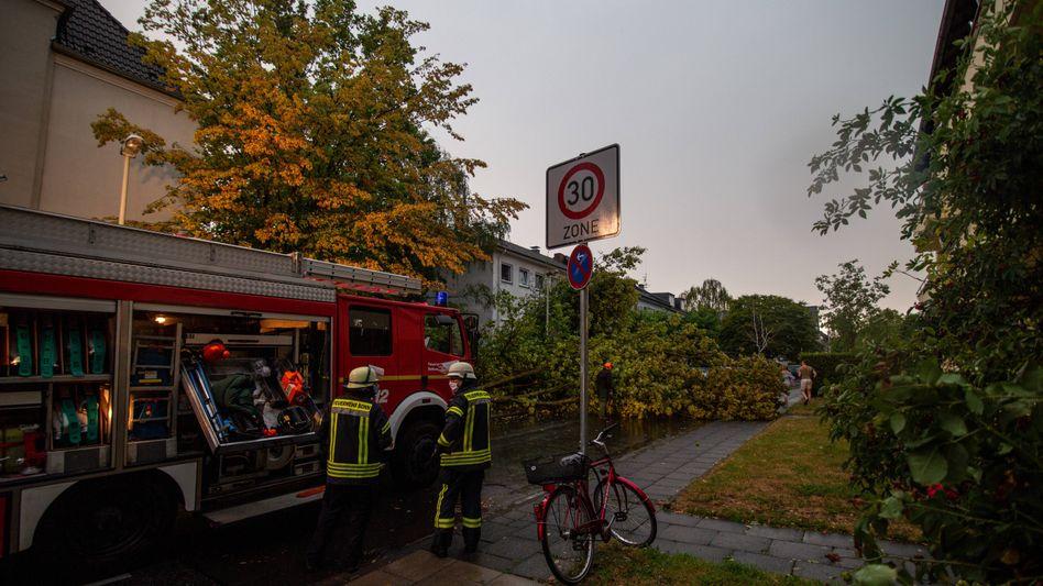 In Bonn gab es am Mittwoch zahlreiche Unwetterschäden: Viele Bäume stürzten um, Keller liefen voll.