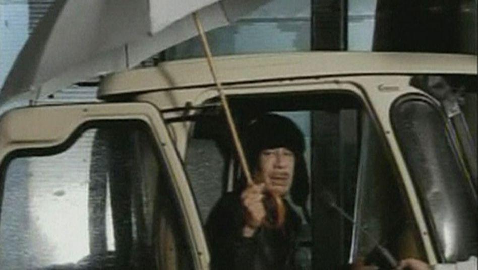 Mann mit Schirm: Muammar al-Gaddafi bei einem Kurzauftritt zu Beginn des Aufstands