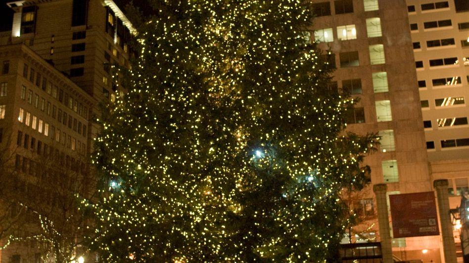 Weihnachtsbaum in Portland: Sicherheitskräfte manipulierten Sprengsatz