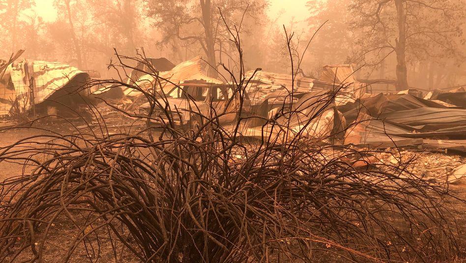 Vom Feuer zerstörtes Haus in Mill City, Oregon