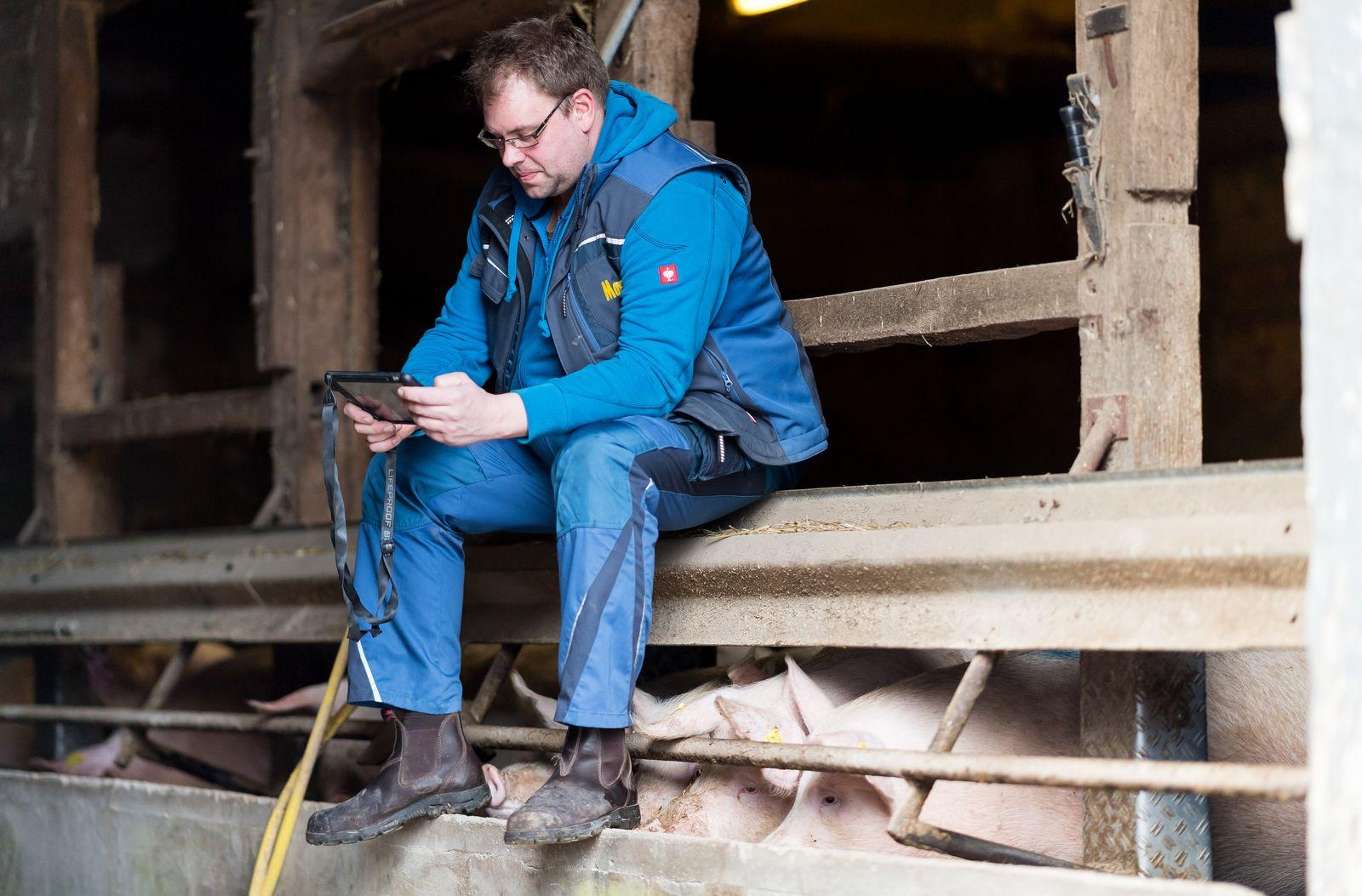 Agrar Blogger / Schweinestall