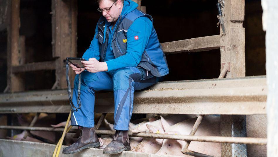 """Bauer """"Holti"""" mit Tablet auf seinem Hof in Nordrhein-Westfalen"""