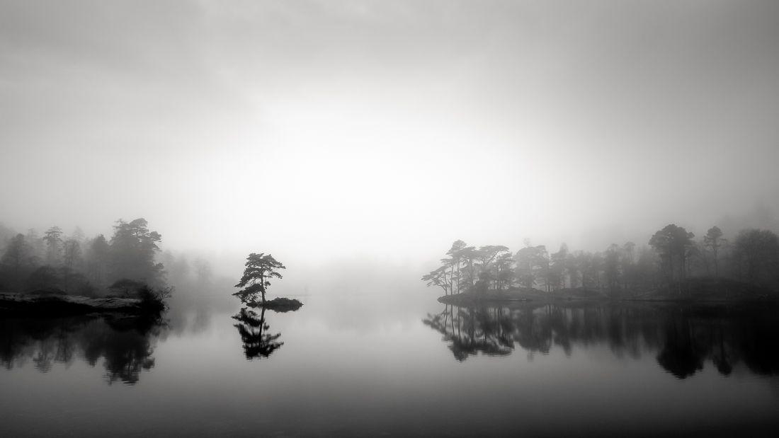 Tarnhows-in-the-Mist-By-Tony-Johnston