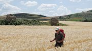 Italiens vergessener Pilgerweg