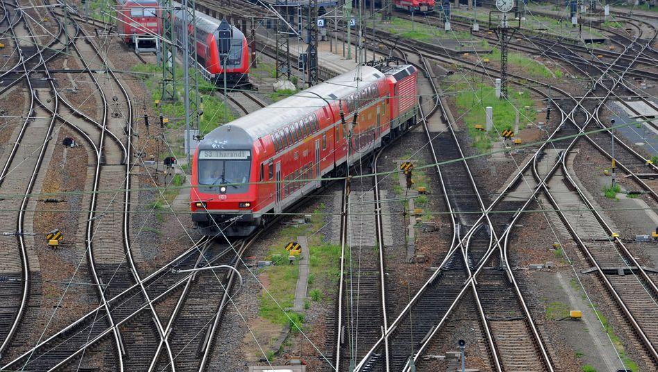 S-Bahn in Dresden: Die Bahn kommt wieder