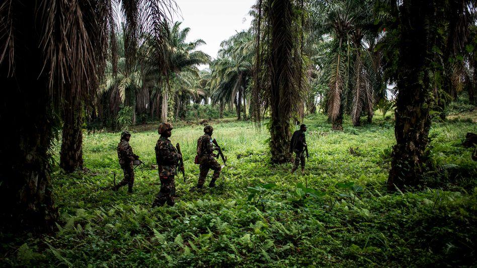 Internationale Einheiten kämpfen in der Region schon seit Jahren mit den Islamisten (Archivbild)