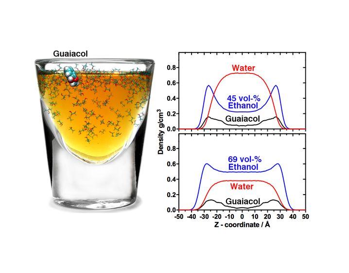 Unterschiedlich verdünnte Whiskys und Guaiakol-Modell