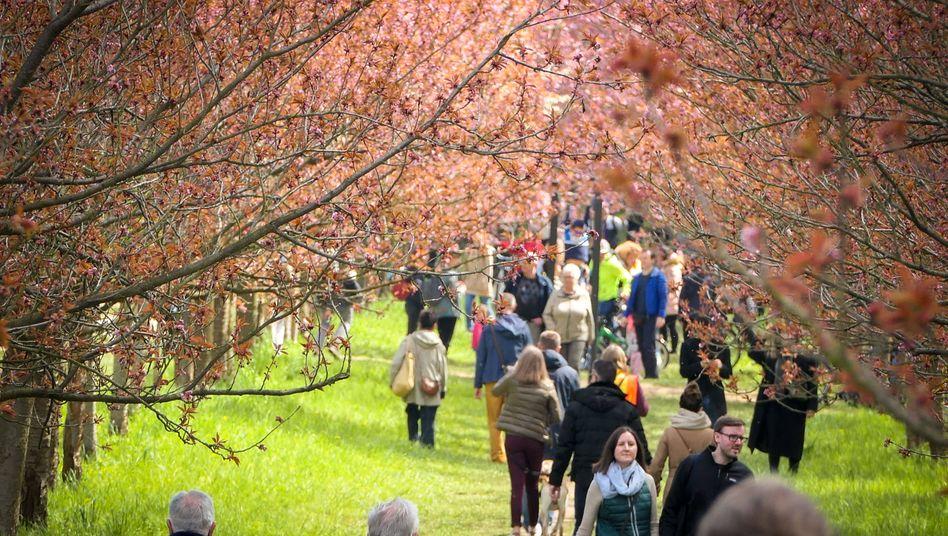 Spaziergänger bei Teltow (am Samstag): Die persönliche Lage der Menschen hat sich – im Schnitt – in der Pandemie nicht verschlechtert