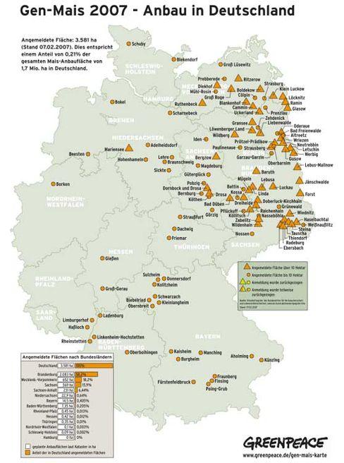 Genmais-Karte: Auch im Jahr 2007 Anbauflächen überwiegend in Ostdeutschland