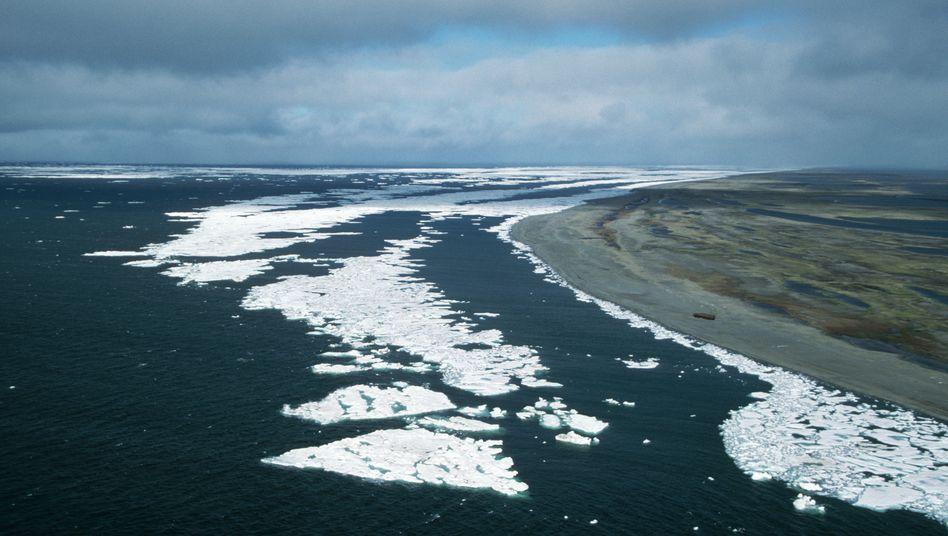 Der Arktische Ozean vor der sibirischen Küste (Archivbild)