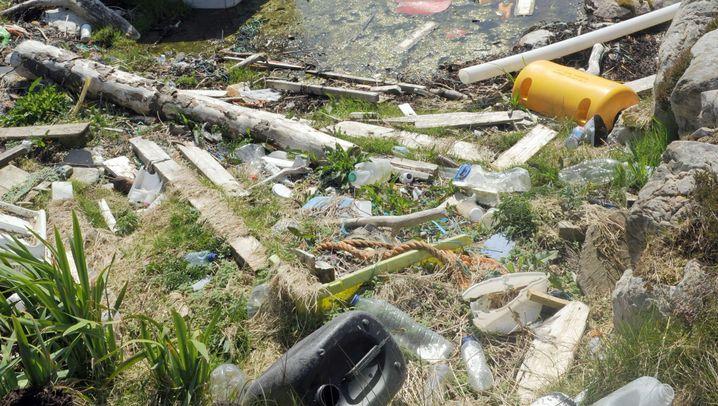 """Plastikmüll an Norwegens Küste: """"Wir fragen uns: Was passiert hier?"""""""