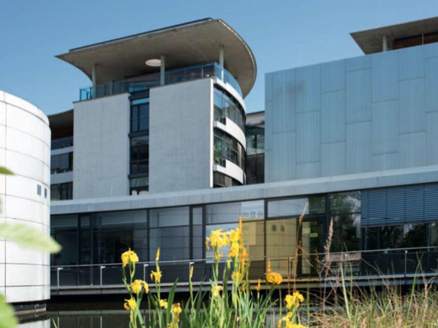 EINMALIGE VERWENDUNG Max-Planck-Instituts für Kognitions- und Neurowissenschaften