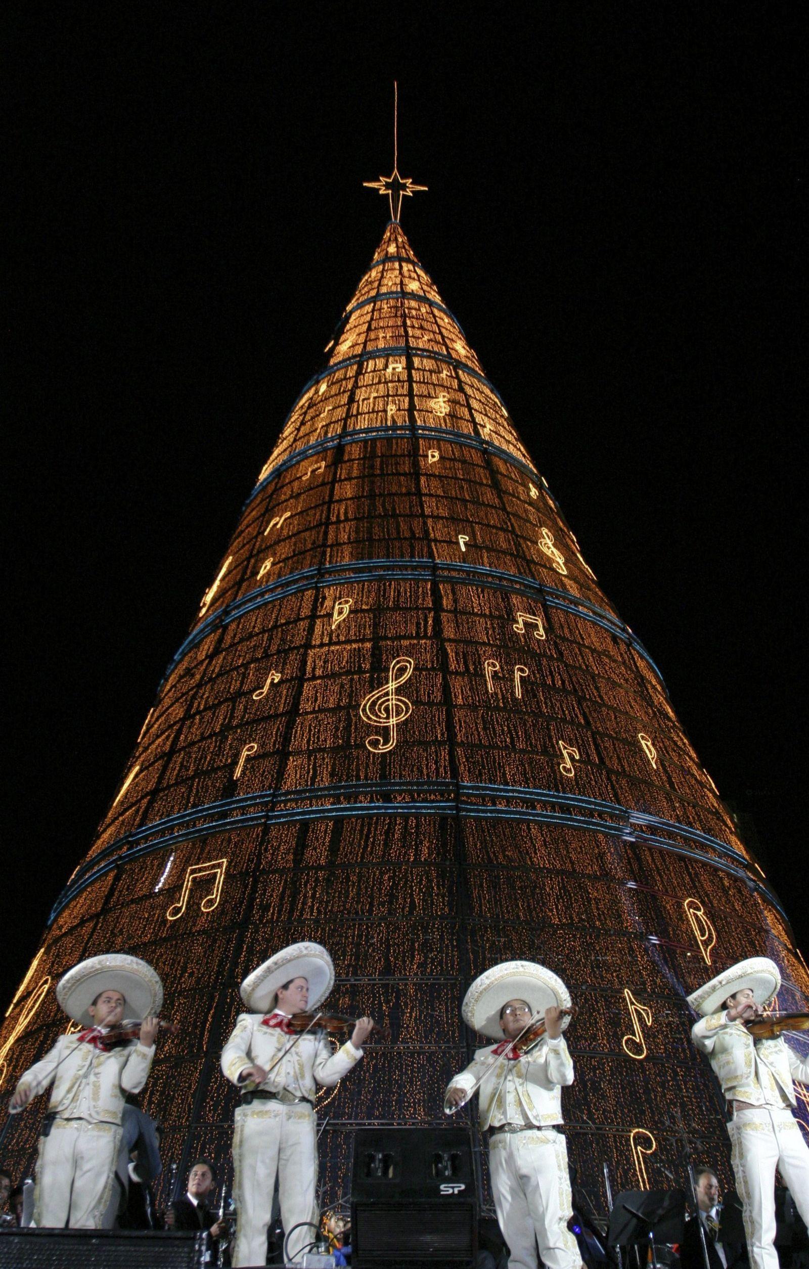 Mexiko weiht höchsten Weihnachtsbaum ein