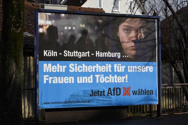 AfD-Wahlplakat des Unterstützervereins