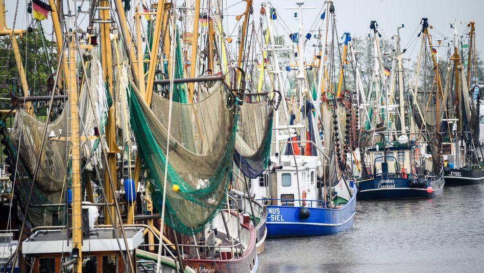 Kutterhafen in Greetsiel, Niedersachsen: Besonders Fischer sollen von den EU-Hilfen profitieren