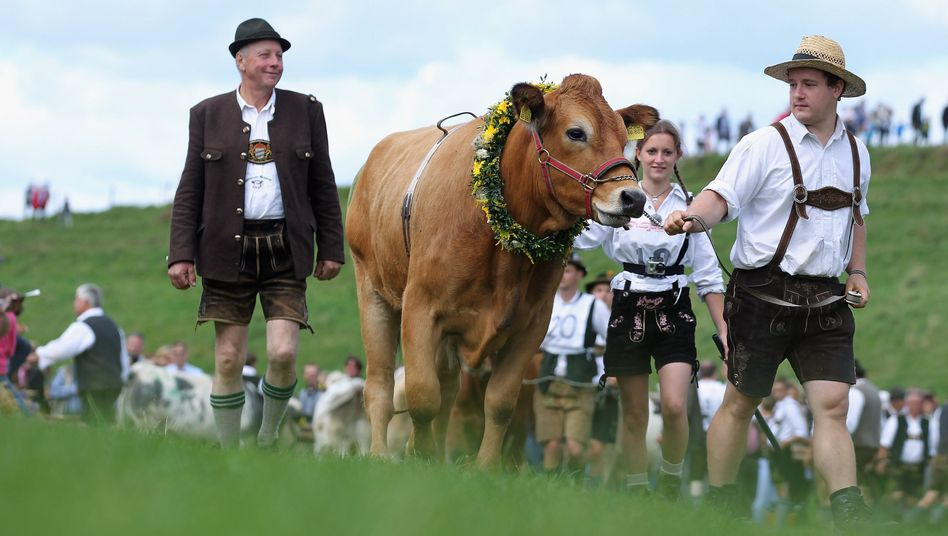 Germany has just lost its longest word -- referring to a law on monitoring mad cow disease.