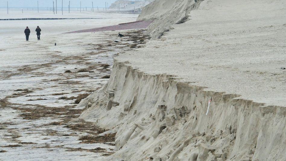Abbruchkante am Nordseestrand auf Wangerooge: Massive Sandverluste