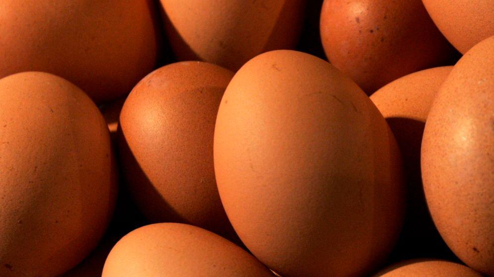 Lacto- oder Ovo?: Die verschiedenen Arten des Vegetarismus