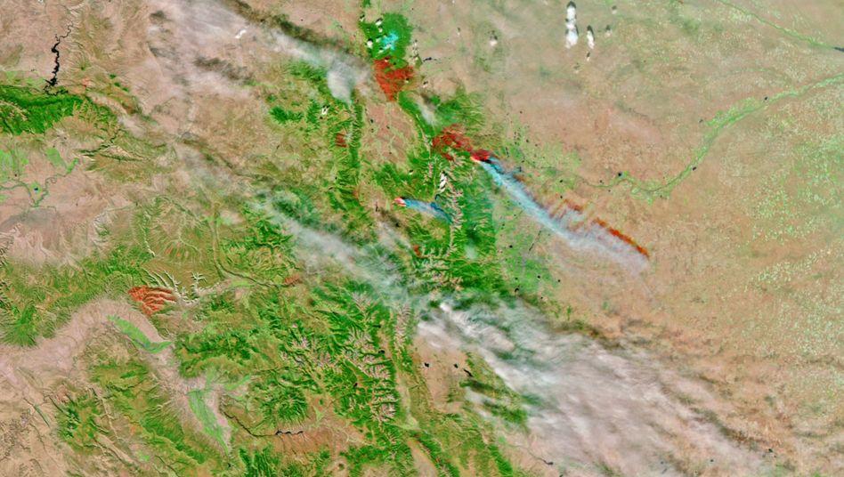 Rekordbrände in Colorado: Der Bodensee reicht nicht, um die betroffene Fläche zu beschreiben