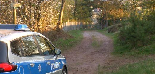 Ludwigslust-Parchim: 70-Jähriger nach zwei Tagen im Wald gefunden