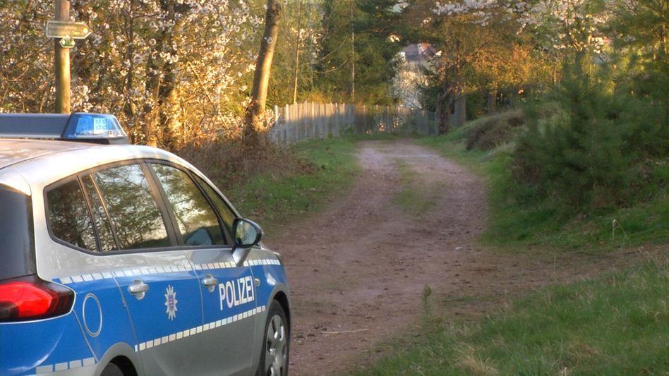 Polizeiwagen im Wald (Symbolbild)