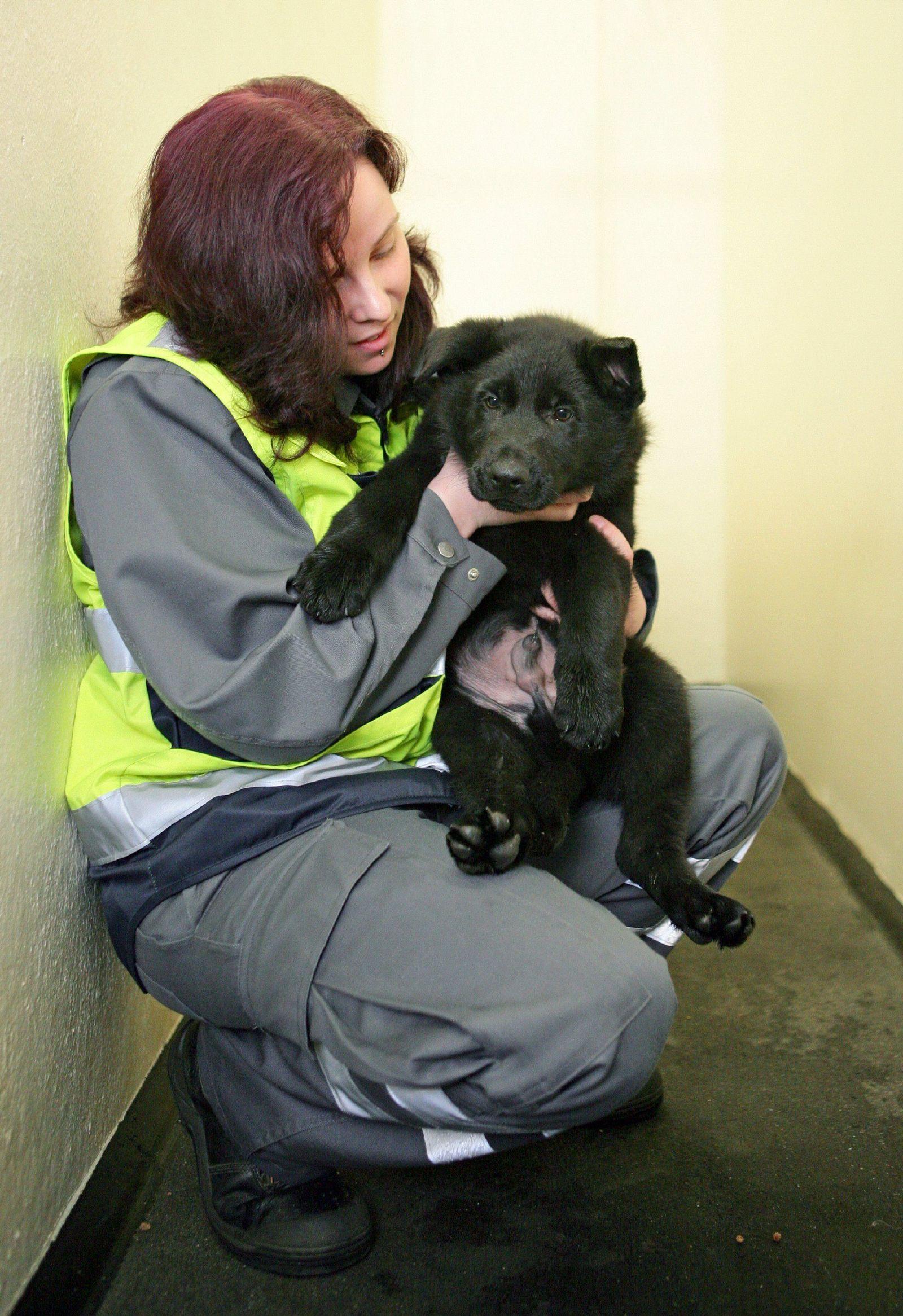 Tiefpflegerin / Tierstation