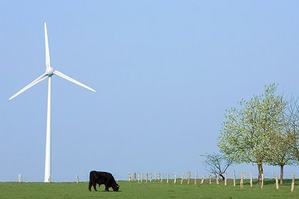 Not as idyllic as the image may suggest: German courts are starting to deal with increasing numbers of wind farm related cases.