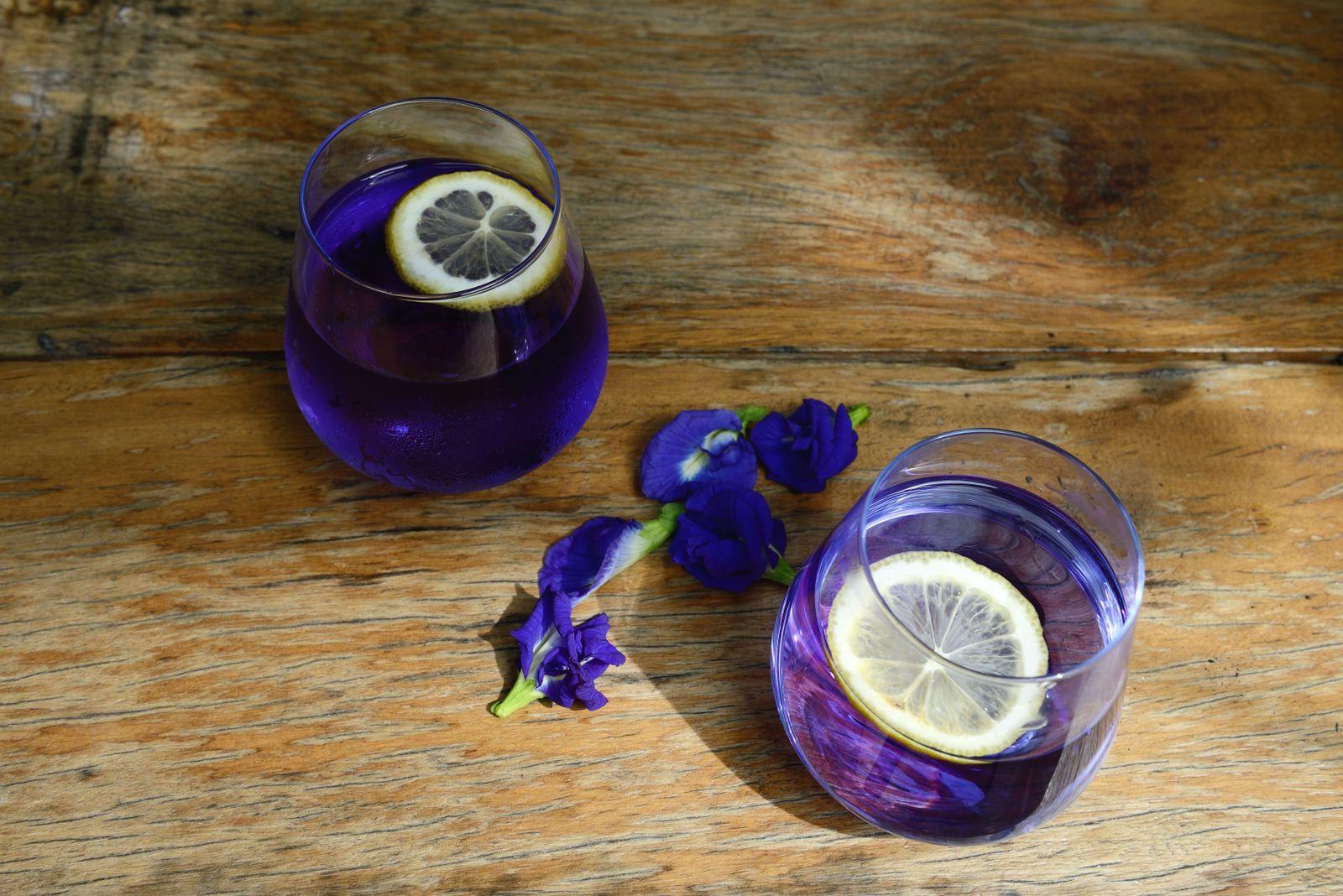 Blue pea flower tea with lemon in glasses