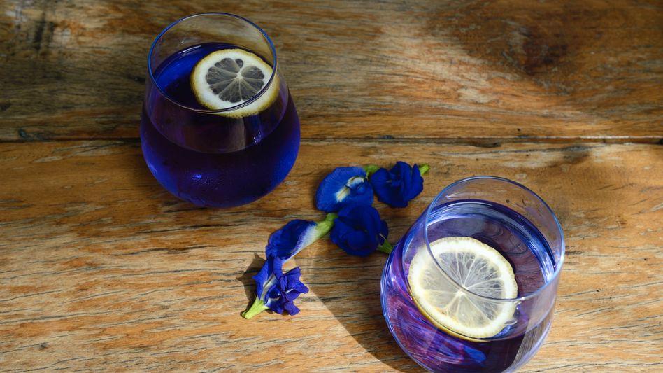 Blauer Tee mit Zitrone