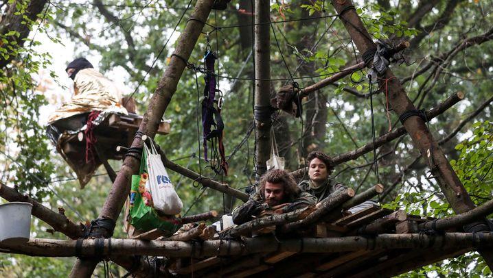 Braunkohlerevier: Polizei startet Räumung im Hambacher Forst