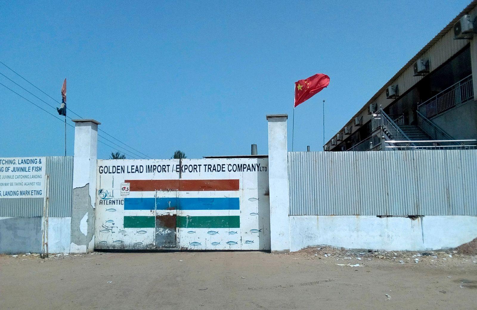 Gambia Environmental Activism