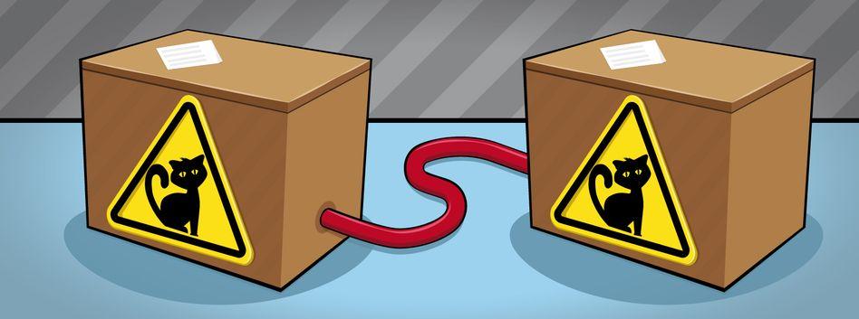 Zwei Schrödinger-Katzen - gekoppelt durch Verschränkung