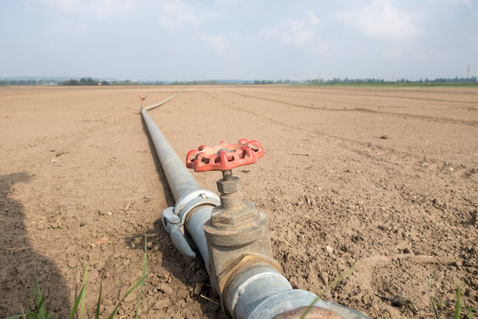 Bew?sserungssystem auf einem Feld bei Bornheim im Rhein-Sieg Kreis. Trockener Acker bei Hitzewelle *** Irrigation syste