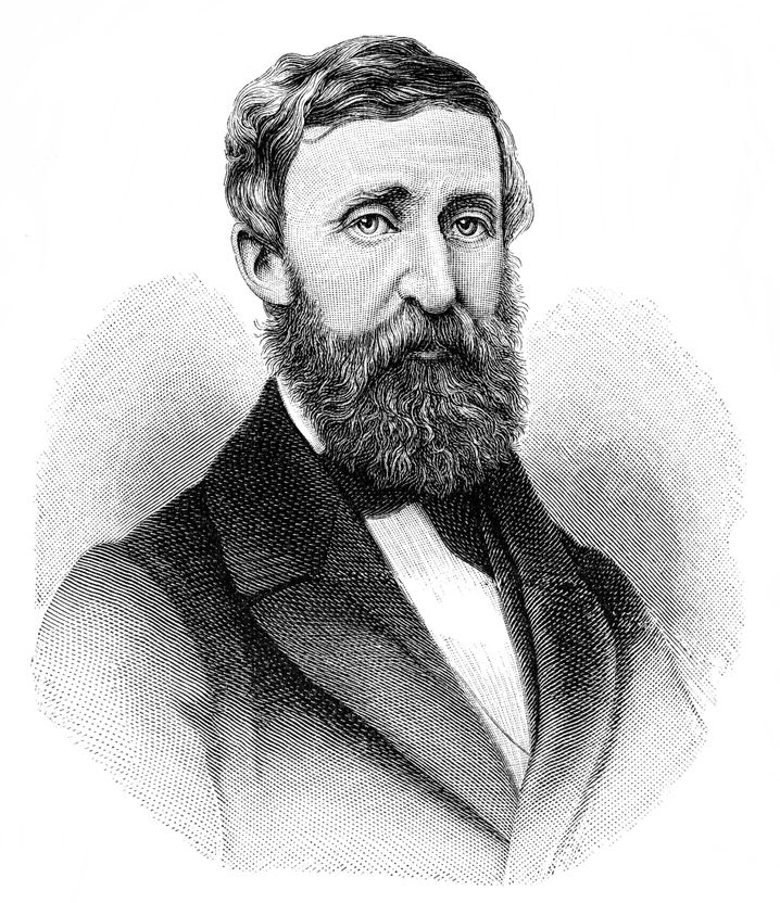 "Porträt von Henry David Thoreau: ""What would Thoreau do?"""