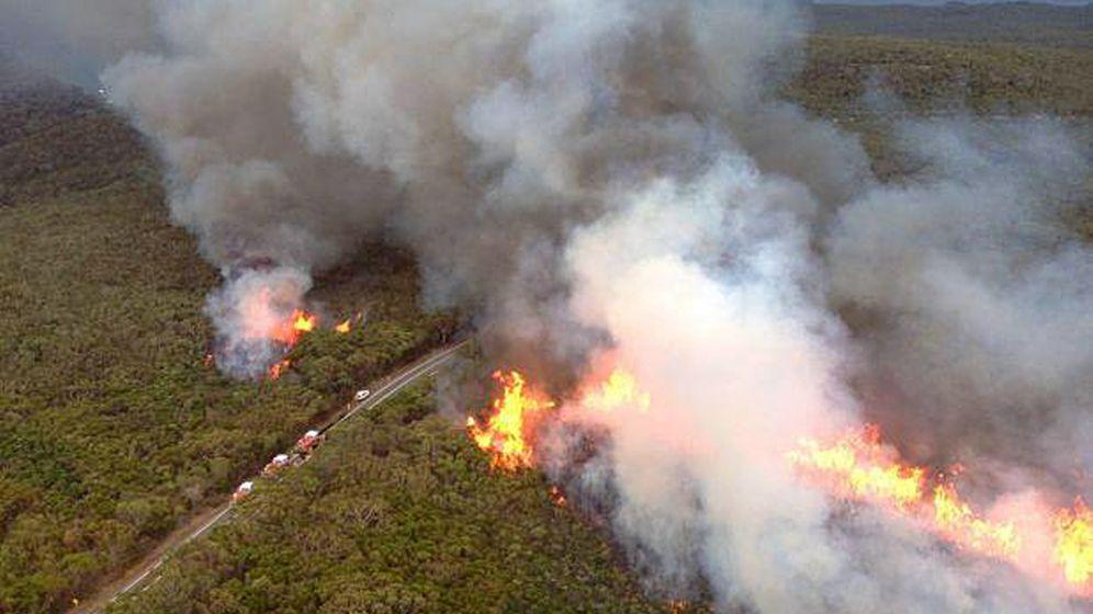 Buschbrände in Australien: Rauch über dem Nationalpark
