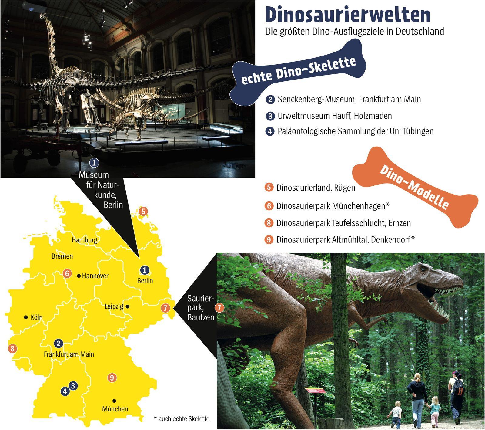 •KSP 0220 Dinomuseum