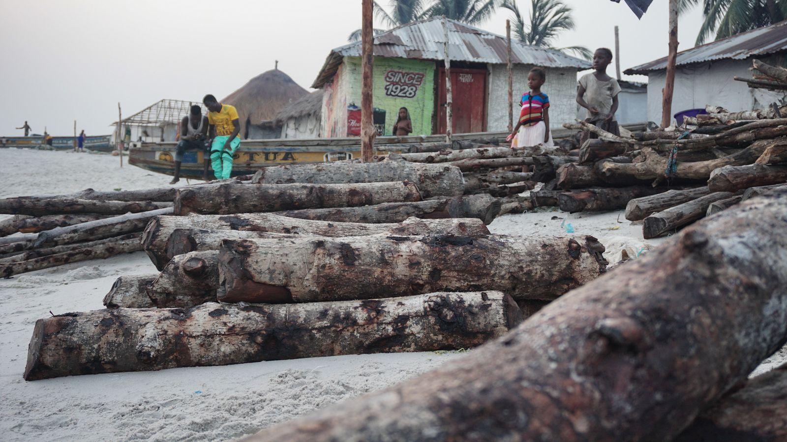 Nyangai. Entwaldung beschleunigt die Erosion der Inseln weiter - Alicia Prager