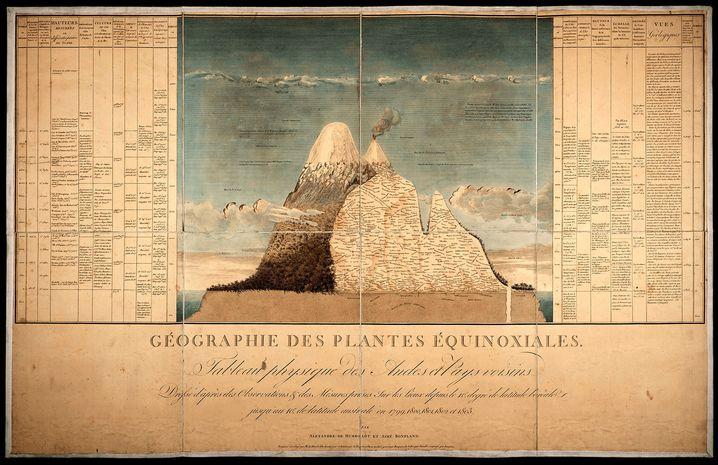 Naturgemälde von Alexander von Humboldt