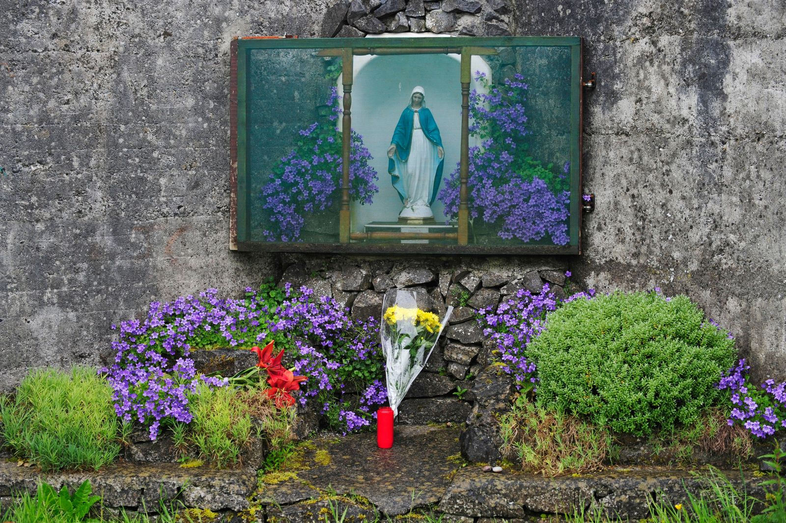 Irish government apologises following an investigation into Ireland's mother-and-baby shelters, Tuam - 06 Jun 2014