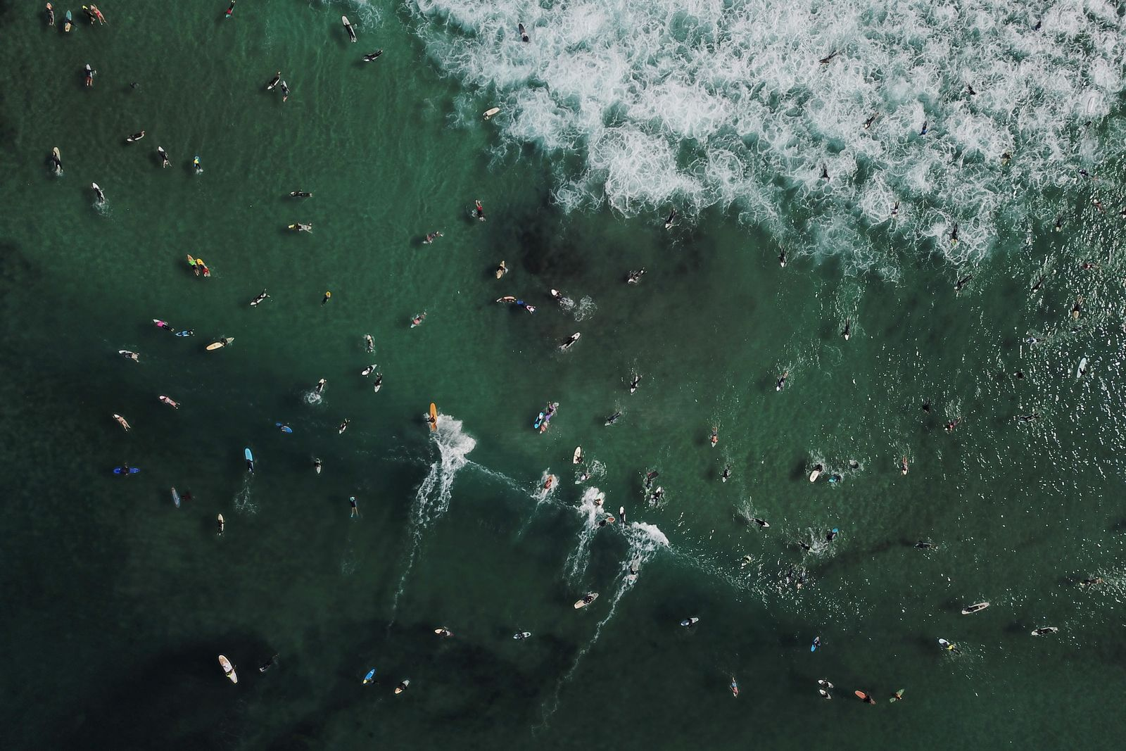 Paddle out world record attempt in New South Wales