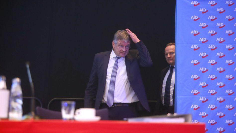 Parteichef Meuthen