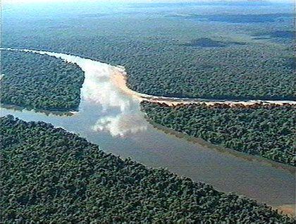 In der Regenzeit liegt der Wasserstand des Orinoco bisweilen 15 Meter über dem normalen Pegel