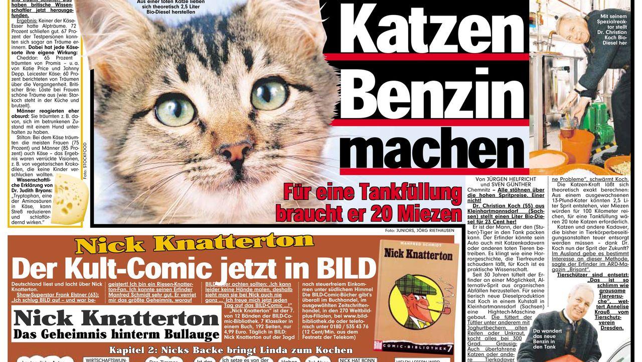 Suche Bild Zeitung