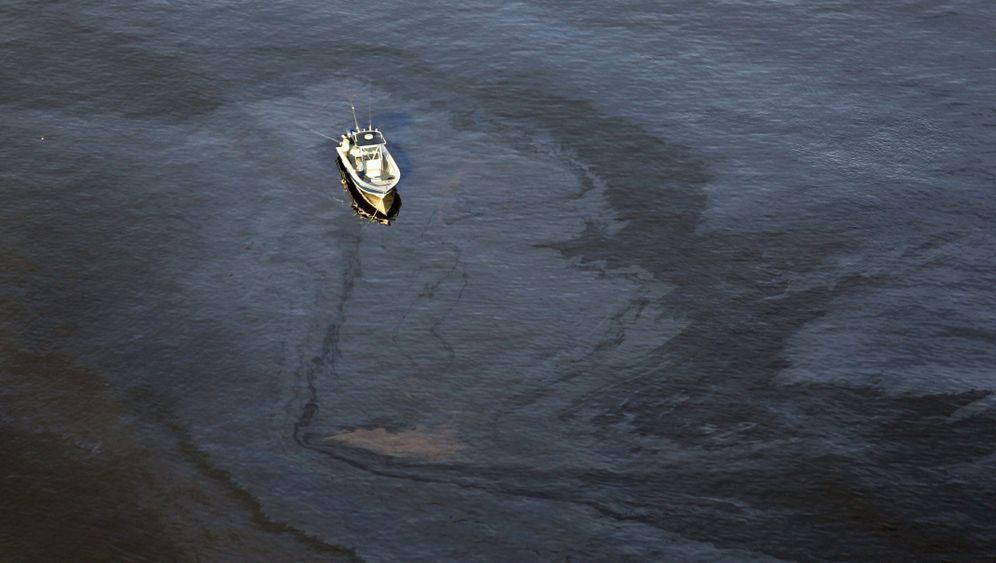 Ölpest: Geschundener Golf