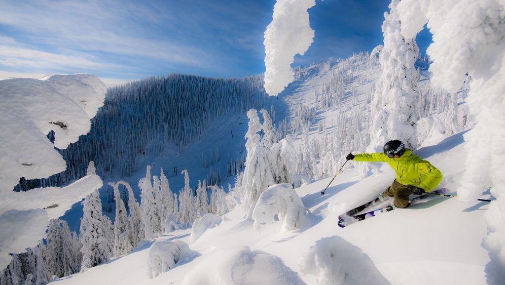 Red Mountain: Viel Schnee und Vielfraß