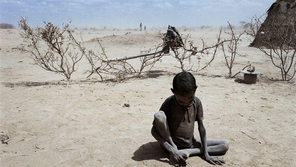 """Dürre in Äthiopien: """"Bei den Versicherungen muss gewährleistet sein, dass niemand ausgeschlossen wird"""""""