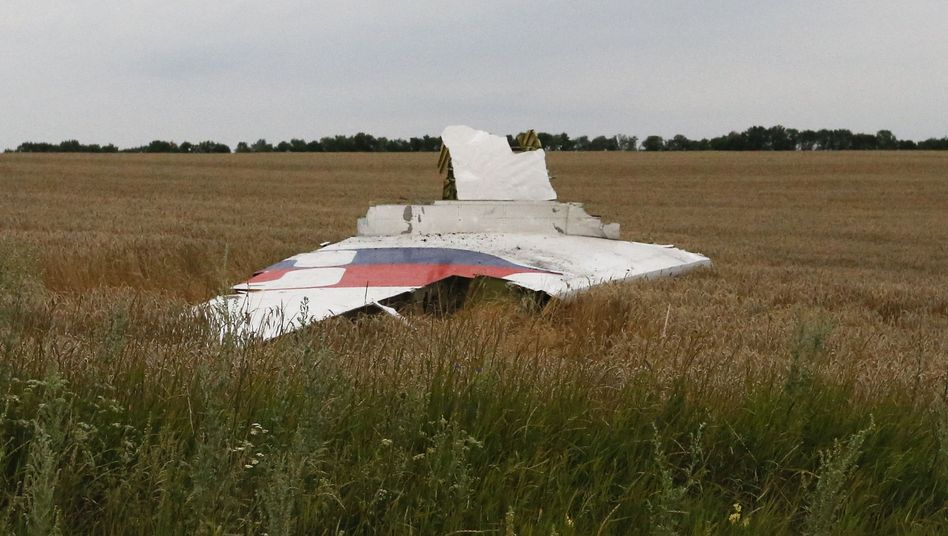 Wreckage from Malaysia Airlines Flight MH-17 is seen at the crash site near the settlement of Grabovo in Ukraine's Donestk region.