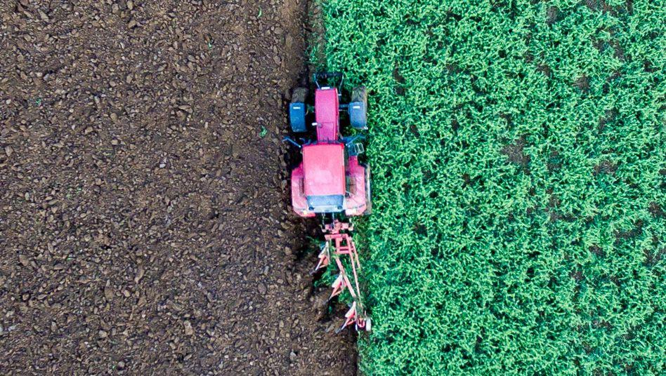 Schlepper auf einem Feld nahe Straubing: Hin zu grünerer Landwirtschaft
