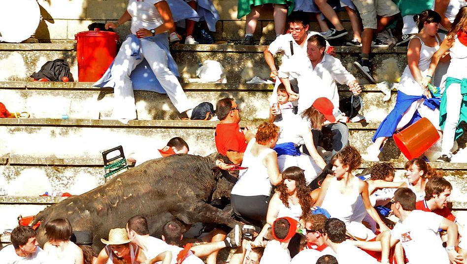 Verletzte in spanischer Arena: Ein Stier sieht rot
